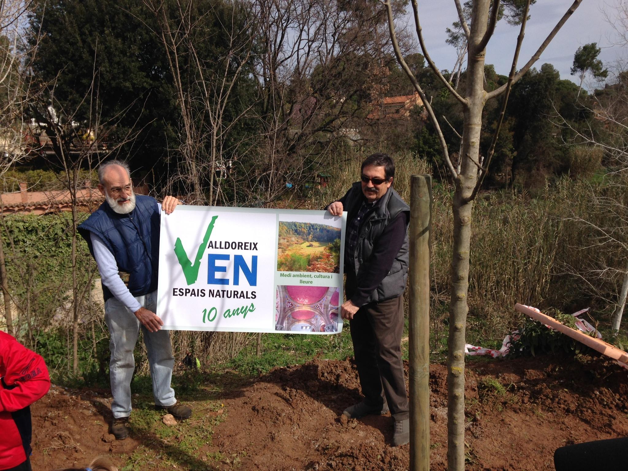 Valldoreix celebra el Dia de l'Arbre plantant dos freixes al passeig del Nard