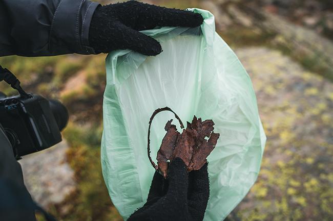 La Colònia de Montserrat acull aquest dissabte una jornada de recolloda de residus al bosc